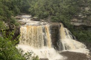 Blackwater Falls closeup
