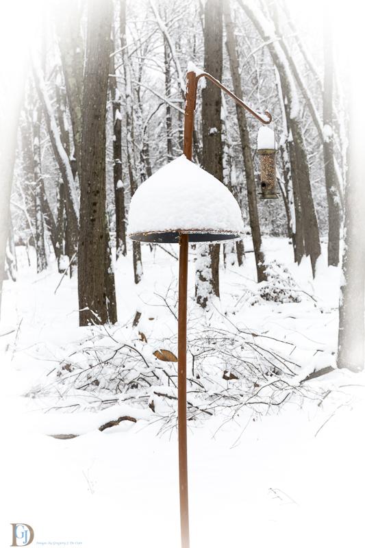 snow play-25